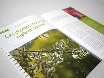 mise en page d'un article du magazine Jardins de France